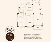 5栋6栋D4-117m²