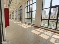 出售碧桂园S4紫薇天悦90.3平米68万商铺