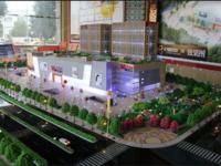 急!急!急!龙蟠明珠广场 蔚来城一楼商铺 42平米商铺面议可谈