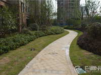 清流公园万达广场旁 大成国际电梯洋房 4室毛坯有证 133万