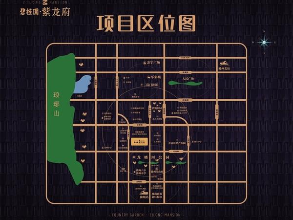 紫龙府 精装好房,首次出租,位于七彩世界欢乐城、恒大名都、裕坤丽晶城附近