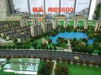 乌义最大楼盘门面房出售,回报率最高的门面。