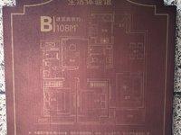 出售凯迪融创 玉兰公馆3室2厅2卫115平米86.8万住宅