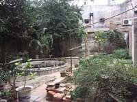 凤凰四村 一楼前后都有院子100多平米 满五唯一 看中可谈