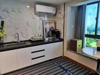 康佳科創云谷,高鐵輕軌口,新一中旁復式白領公寓通燃氣 可辦公