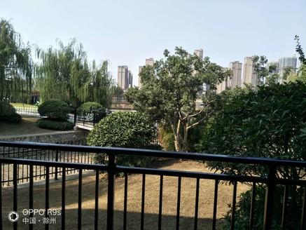 碧桂园罗马世纪城,开发商精装修交付,三室,环境一流