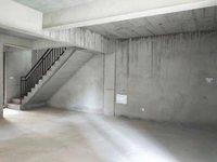 城南 祥生十里 性價比高 疊墅下疊一二樓 帶165平大院子 送車位
