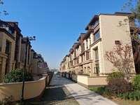 翰林雅苑 叠墅 政府旁 名校边 高端小区 完美户型 性价比高 急售
