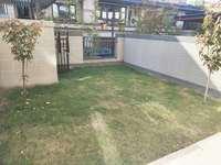 金鹏珑玺台一楼带大院子,环境好,开发商精装修交付,家具已定制好,未住过