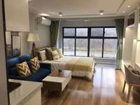 星荟城 挑高4.8米复式公寓 位置好 交通便利 周边配套齐全