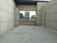 南台府 顶楼复式送阁楼 南北露台超大 外加60平晒台 地理位置极佳 生活便捷
