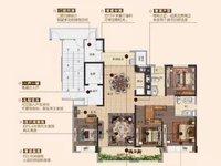 碧桂园 紫龙府大平层180平方5室3厅2卫140万住宅