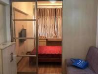 泰鑫城市星座公寓45平方 精装全配 无税 紫薇学区房