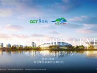 华侨城 欢乐明光 滁州明湖 新一中旁 最新特价房 随时看房