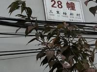 """出售""""三官三里塘新村""""3室2厅1卫"""