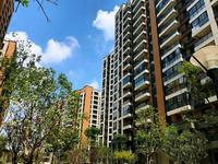 高速公园壹号旁边 碧桂园北岸世家118平精装修现房 家主急售62.5万