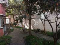 五中学区广场家园一楼三室两厅精装全配南北通透前后院子100平
