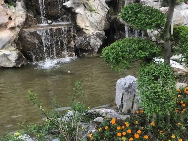 出售金鹏 山河印抵工程款合院。260平米200万住宅