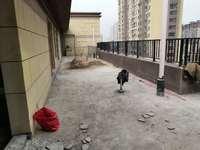 金鹏玲珑湾东苑洋房顶楼复式 三个超大露台 实用面积200平