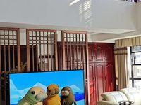 发能国际城 洋房顶楼复试3米层高 6室三厅无税户型漂亮