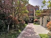 玫瑰郡高档别墅 赠送面积多 实际使用面积360平 院子大 直接改名