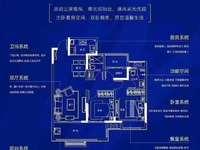 城南蓝光雍锦湾 精品小三室 三开间朝南 南北双阳台 直接改名