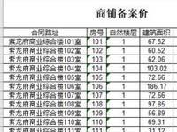 紫龙府 沿街商铺火爆热销中 黄金地段 均价1万8