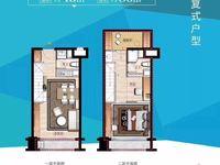 滁州市高铁站星荟城复式公寓 挑高4.8米 一层价格得二层