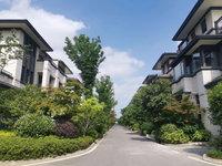 金鹏玲珑湾别墅.建筑面积251平实际面积300多平.单价9000多.认购优惠多多
