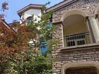 出售碧桂园欧洲城 别墅 255平米130万住宅
