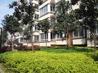 龙蟠西苑龙蟠小学六中学区,滁宁轻轨99广场站对面,证件齐全,无税无土地出让金。