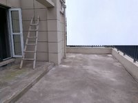 天逸华庭 洋房 唯 一 一套顶楼复试 户型方正,利用率大