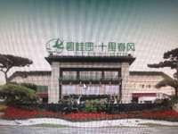 十里春风 碧桂园 宁滁路 首付10万 轻轨口 三学区政府旁 双公园环绕