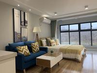工抵房星荟城 首付8万复式公寓 高铁轻轨双站口 4.8米挑高