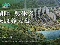 明湖核心位置 欢乐明湖 轻轨站口 奥体中心 首开优惠巨大