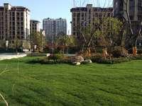 出售和顺 东方花园3室2厅2卫109平米85.8万住宅