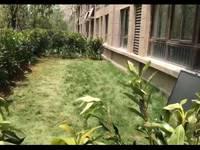 出租弘阳 时光澜庭洋房,一楼,有大院子,3室2厅2卫118平米1000元/月住宅