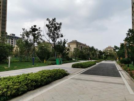 高速公园壹号国企开发 双洪生态文化公园对面 近轻轨大学城旁