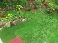 百合花园一楼可以自己弄院子,中装全配,价格可谈,随时看房。