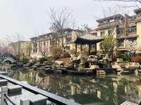 琅琊新区政府隔壁 翰林雅院别墅 边户 超100平大院子 楼王 实用面积500平