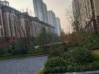 和顺.东方花园,城南政务区核心位置,前面洋房,无遮挡有赠送,证件齐全可以按揭