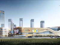 金鹏山河系旁 琅琊新区玖玖广场旁 轻轨口 周边设施齐全 滁州品质高档小区