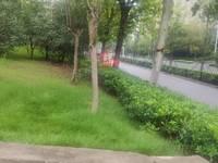 出租扬子科技苑2室2厅1卫80平米1000元/月住宅