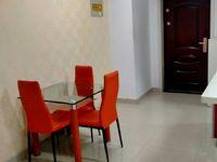 出租泰鑫城市星座1室1厅1卫45平米1元/月住宅。。