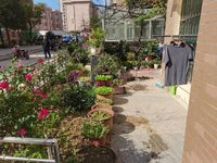 龙池花园2室2厅1卫80平米带院子40平52万住宅