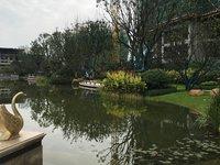 出售碧桂园 紫龙府4室2厅2卫145平米120.8万住宅