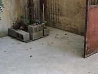 出租紫薇西区2室2厅1卫70平米1400元/月住宅