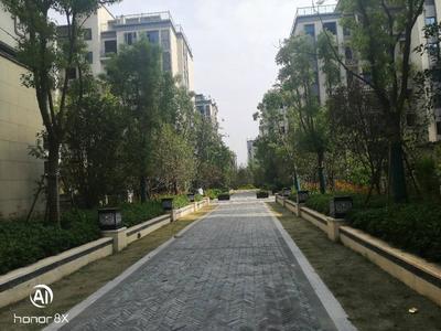 真实价格港汇公馆紧邻吾悦广场500米永乐东坡路好楼层
