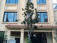 城北 别墅 琅琊天下 303平 1-4楼大院子和露台 实际500平左右 3个车库