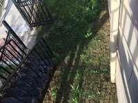 和顺东方花园 高档小区 洋房 1楼带院子 152平米